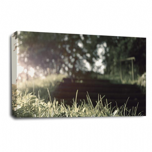 Forest Landscape Canvas Art Dappled Light Wall Picture Print